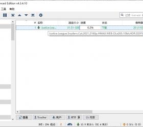 qBittorrent v4.3.5.10增强版