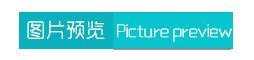 网页转应用(*Mod*)v1.1.3清爽版